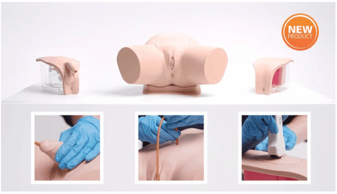 New product range: Catheterization Trainer Range