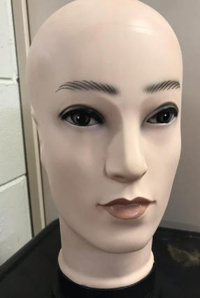 Face display head