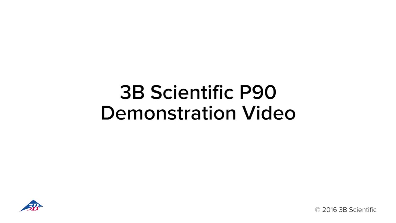 P90 Demostration Video_Moment